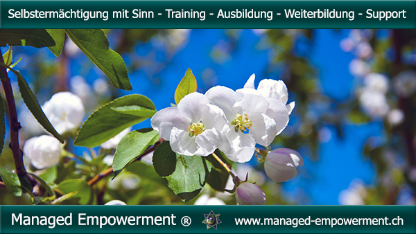 Managed Empowerment Training